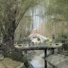 Yinding Bridge at Springtime by Toni Abdnour