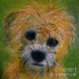 Yorkie Sitting Comfortably On Bed Of Green Given By Pauline by Cara Schingeck