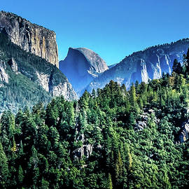 Yosemite Valley by David Patterson