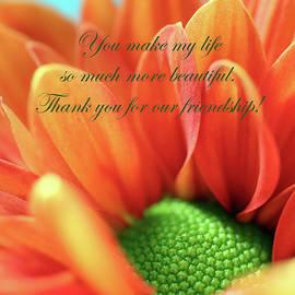 You Make My Life So Much More Beautiful by Johanna Hurmerinta