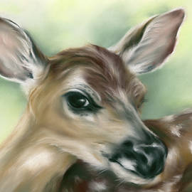 Young Fawn on Green by MM Anderson