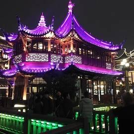 Yu-Yuan Garden at night 4 by Lamei Lepschy Bian