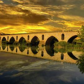 Zamora's Roman Bridge by Micah Offman