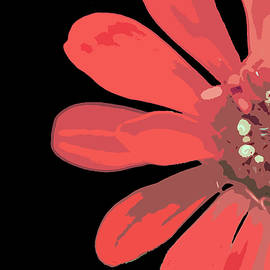 Zany Zinnia in Red by Stamp City