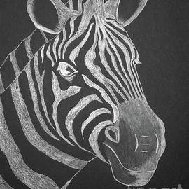 Zebra by Irma Duckett