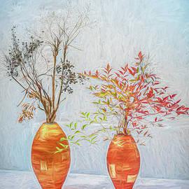Zen Garden by Kevin Lane