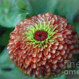 Zinnia with Lemon Eye Entry by Diana Mary Sharpton
