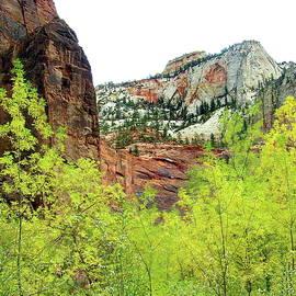 Zion National Park, Utah by Lyuba Filatova
