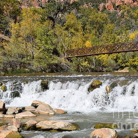 Zion's Virgin River Rush by Janet Marie