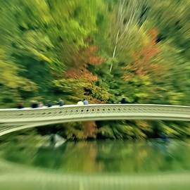 Zoom into fall at Central Park's Bow Bridge in New York City by Geraldine Scull