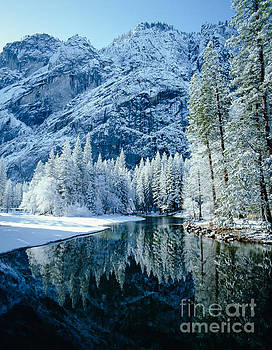 Merced River Reflection 2 by Tracy Knauer