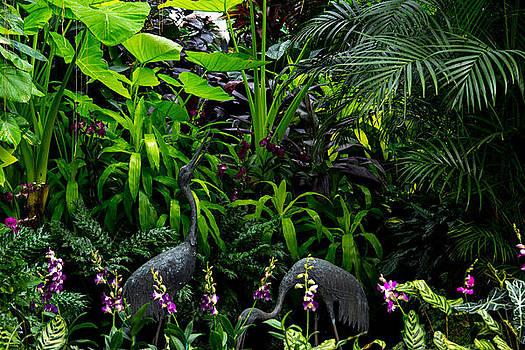 Jungle 2 by Wanda J King