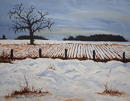 Lone Tree in Winter by Monica Veraguth