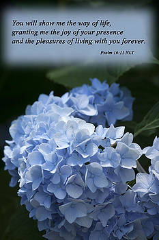Psalm 16 11 by Inspirational  Designs