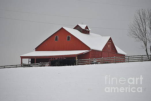 Red Barn by Jeffrey Randolph