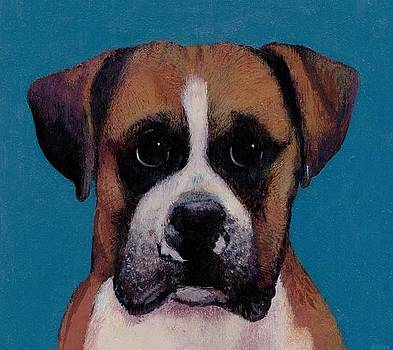Small the Boxer  by Francis Ashley