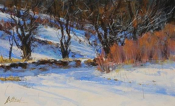 Snow Garden by Greg Clibon