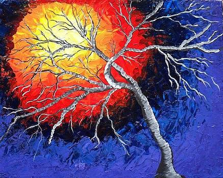 Sunset Tree by Susan Wahlfeldt