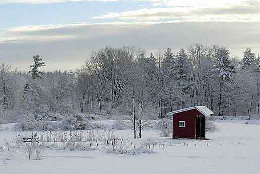 The Shed by Donna Desrosiers