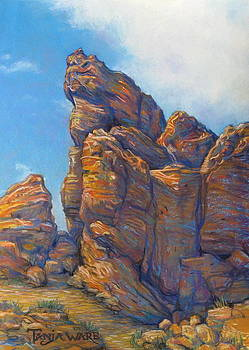 Valley of Fire by Tanja Ware