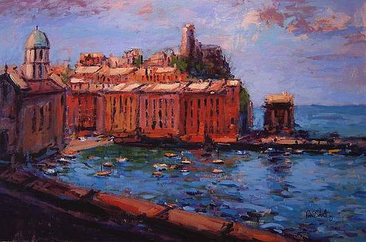 Vernazza from the train by R W Goetting