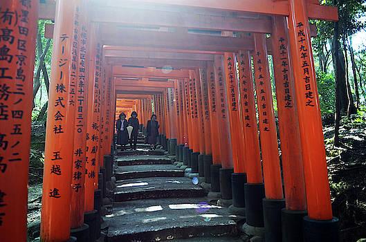 Fushimi Inari Taisha Shrine, Kyoto by Nano Calvo