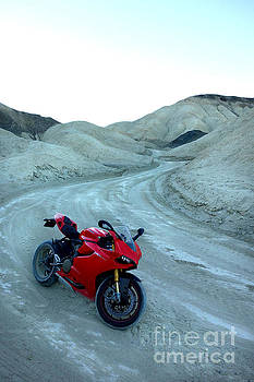20 Mule Team Canyon by AntiHero Panigale