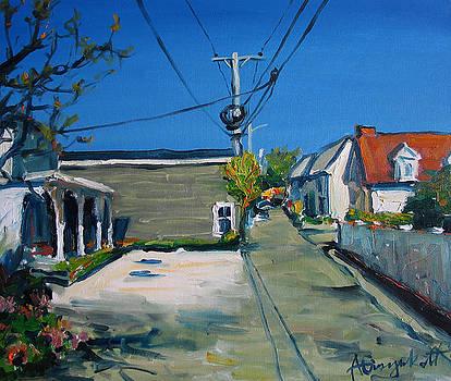 24 Pearl Street. Provincetown by Alexei Biryukoff
