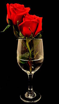 Love. by Dustin Bridges