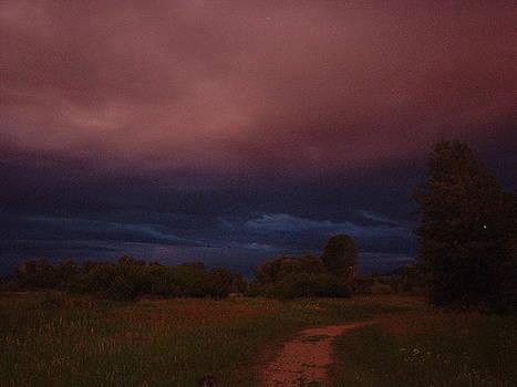 Montana Skies by Yvette Pichette