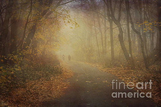 A Path Home by A New Focus Photography