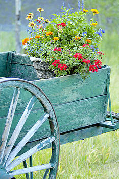 A Wagon Full Of Spring Flowers by Kriss Russell