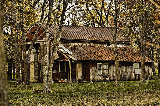 Abandoned Farmhouse by Gene Linzy