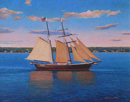 Afternoon Sail by Dianne Panarelli Miller