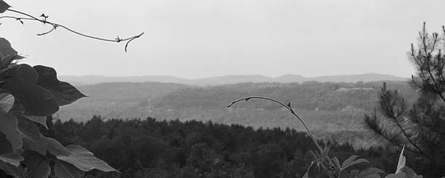 Alabama Hills 1 by James Blackwell JR