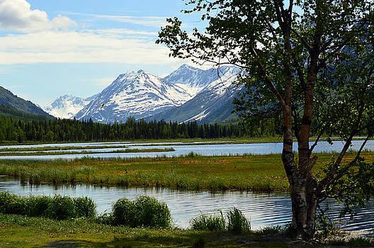 Alaska Beauty by Duane King