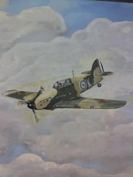 Alpine Fighter by Stephen Thomson