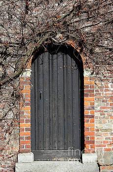 Ancient wooden door in Bruges by Kiril Stanchev