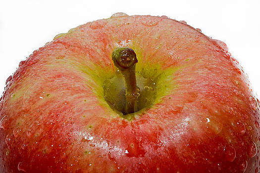 Apple by Jose Mena
