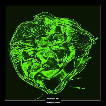 Art Work 234 Jellyfish green by Alexander Drum