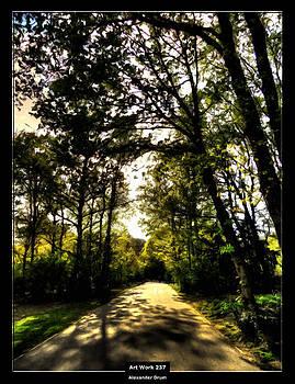 Art Work 238 Forest by Alexander Drum