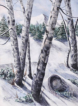 Aspen Trees by Rita Miller