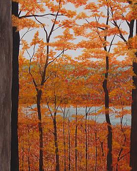 Autumn in Michigan by Brandy Gerber