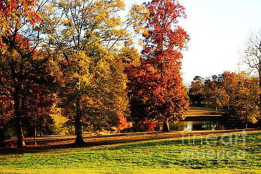 Autumn in the air... by Jinx Farmer