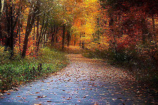 Autumn Path by Robert Mirabelle