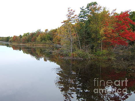 Autumn Reflection by Margaret McDermott