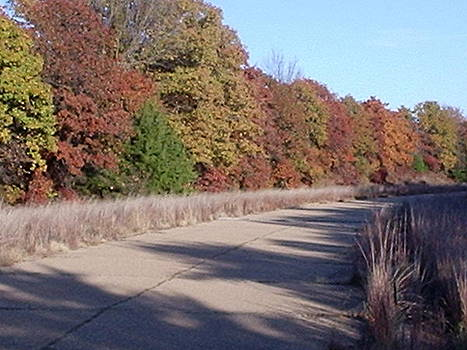 Autumn Road Trip by Trevor Hilton