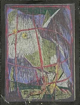 Barn Owl by Betty Snyder Shapiro
