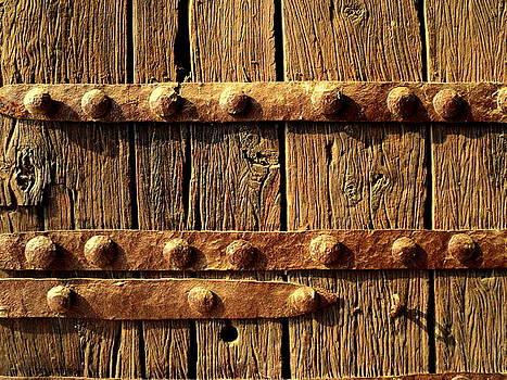 Fort's Door by Salman Ravish