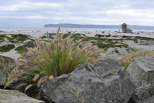 Beach at Coronado Island by Misty Stach